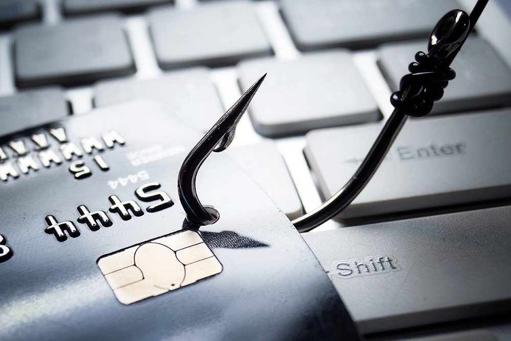 Phishing for Answers: Domains